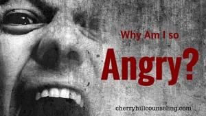 Read more about the article Why Am I So Angry?