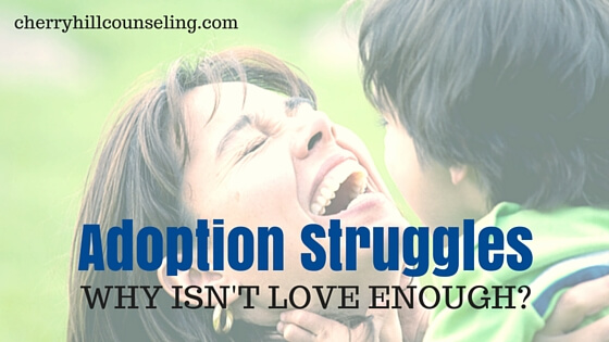 Read more about the article Adoption Struggles: Why Isn't Love Enough?