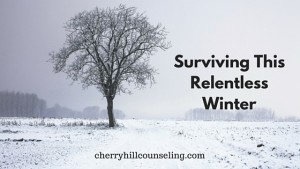 Read more about the article Surviving this Relentless Winter