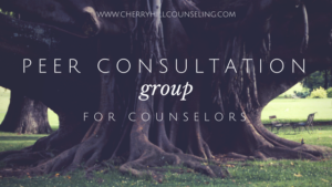 Read more about the article Peer Consultation Group for Professional Counselors
