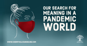 Read more about the article Our Search for Meaning in a Pandemic World