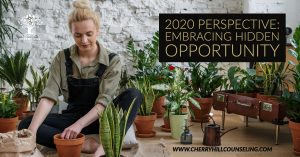 Read more about the article 2020 Perspective: Embracing Hidden Opportunity